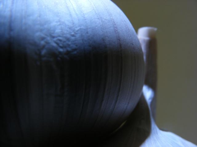 garlic06